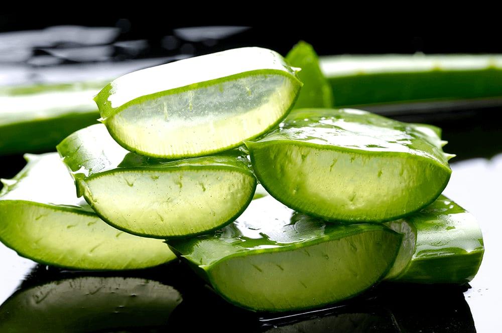 Aloe Vera Para Controlar a Diabetes